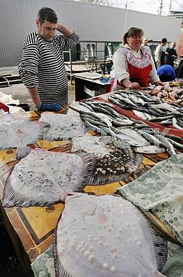 "Sellers of fish on the market ""Privoz"" April 6, 2012"