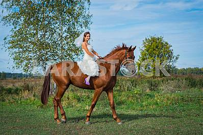 Brown-haired woman on a horse, in wedding dress, forest and blue sky on the background