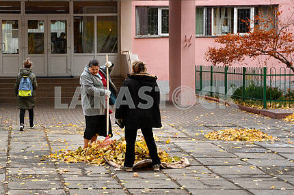 Janitor cleans leaves