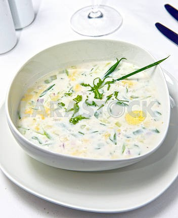 russian cold vegetable soup on yogurt