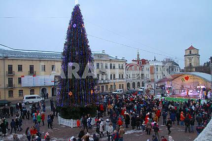 Christmas tree in Chernivtsi