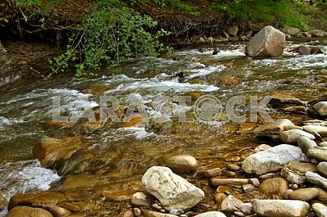 Mountain river Lyutyanka in the Transcarpathian region