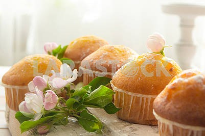 Golden muffins with powdered sugar and spring flowers