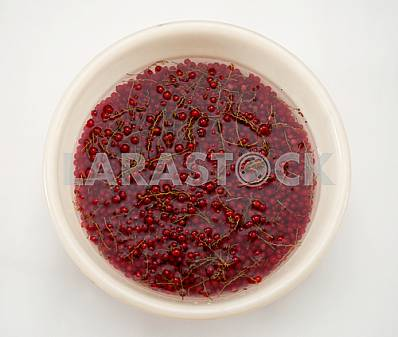 Red currant in water