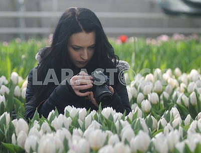 The girl takes pictures of tulips