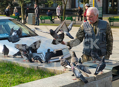 A man is feeding pigeons