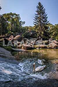 "National arboretum ""Sofiyivka"""