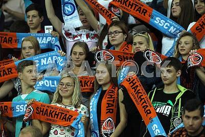 Miner's Fans