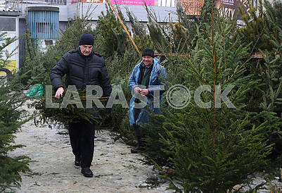 Buyer with a Christmas tree