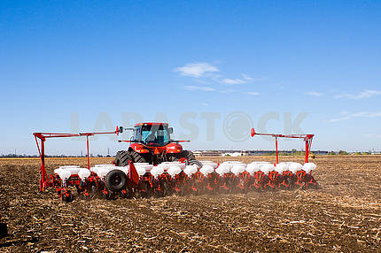 Farmer sowing, crop on the field