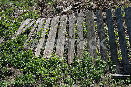Old wooden fence toppled