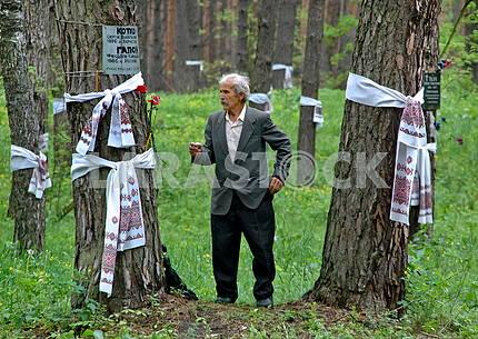 Bykovnya Memorial Reserve