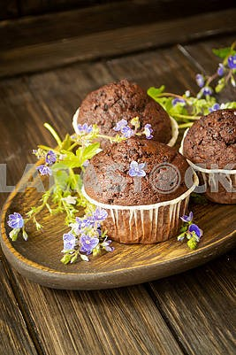 Chocolate muffin cupcakes on rustic wooden table decorated with blue flowers