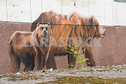 Graffiti on the wall in Pripyat