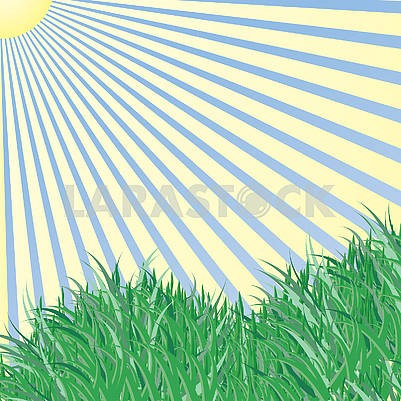 Spring background, green grass and blue sky and sunlight