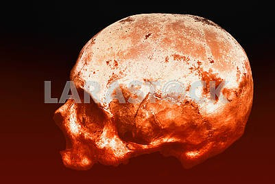 Real human skull on an isolated black and red background