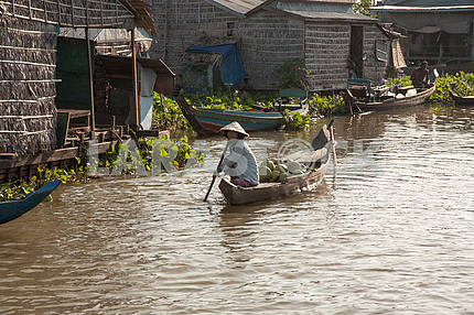 Cambodian woman floating in a boat with coconuts near the fishing village of floating homes on Lake Tonle Sap, Cambodia