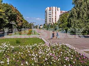 Cherkasy. Street Fame