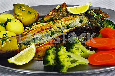 Fish dishes of Dorada (Sparus aurata)