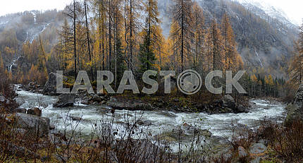 Autumn landscape in the Alps
