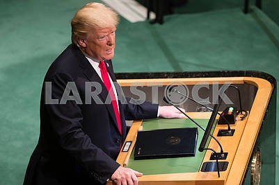 Donald Trump at the United Nations