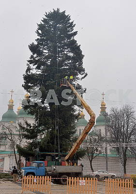 Christmas tree on Sofia's square