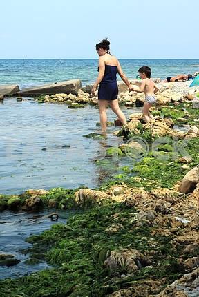 A walk along the seashore