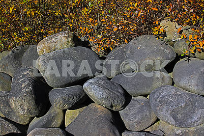 Large oval stones under a bush