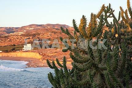 Reserve. Cyprus